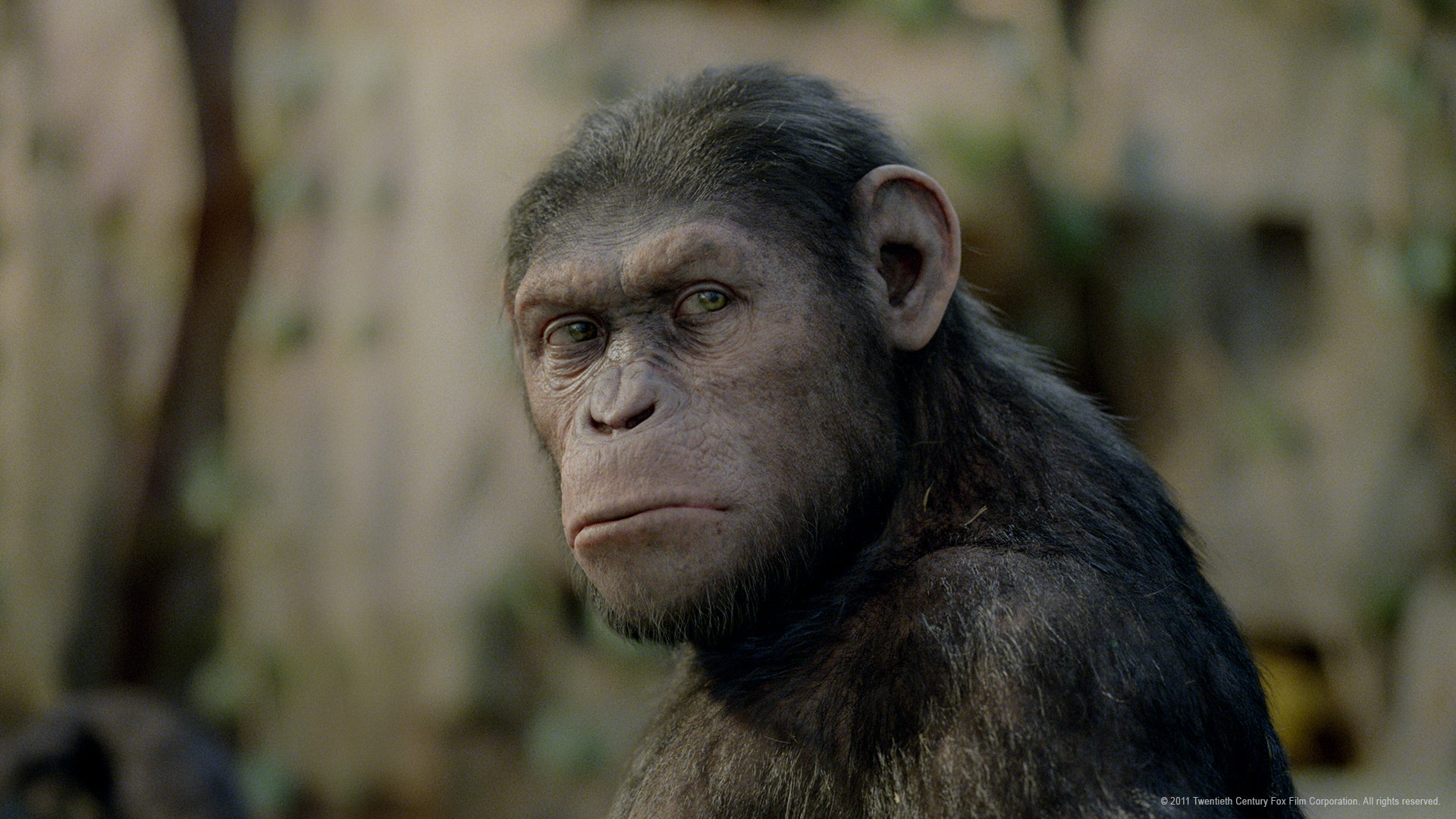 Watch Rise Of The Planet Of The Apes Online With Neon From 5 99